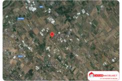 Casa rurale + terreno Assemini