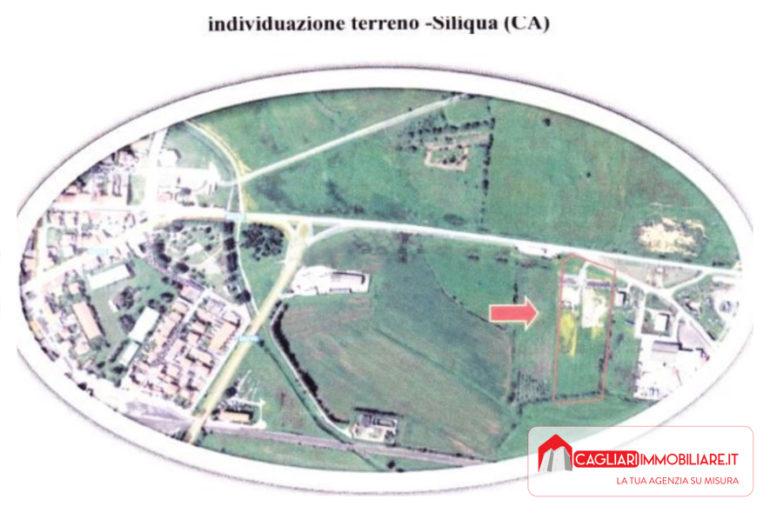siliqua - 28 - image_4
